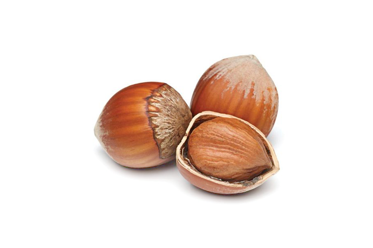 5.1 Hazelnut